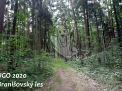 UGO 2020 - Branišovský les